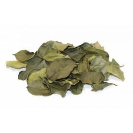 Чай полезный из листьев Гуавы